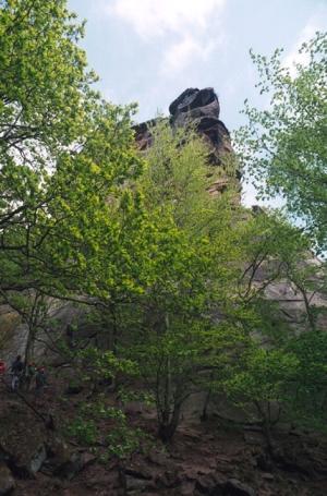 Annweiler am Trifels, Trifels